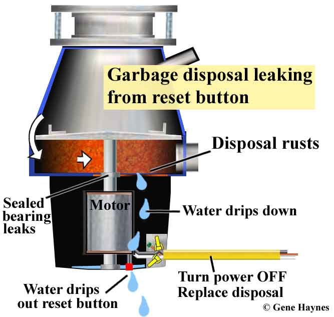 Larger Image, Disposal Leaking