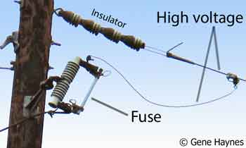 Fuse on power pole
