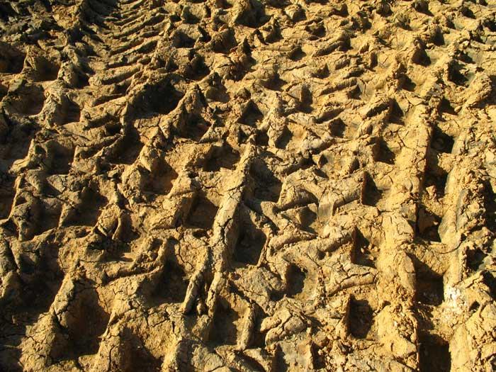 Roller on dirt