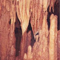 waynes cave