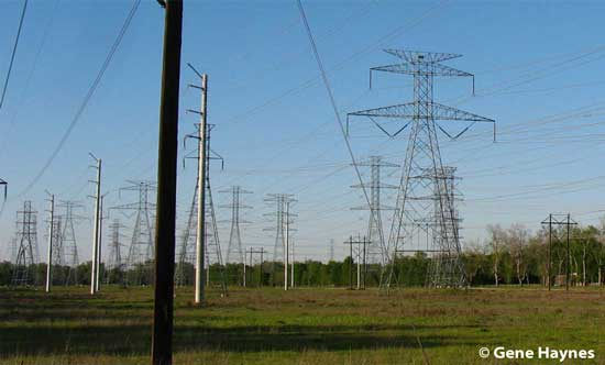 Power lines leave power plant
